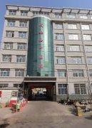 卡吉斯康丹森冷凝锅炉-邯郸市成安县中医院